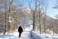 Aktuelles: Wellness tut im Winter gut - Nach einem Spaziergang im Schnee locken Solebad und Sauna