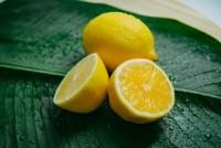 Aktuelles: Warum Zitronenwasser positiv für die Gesundheit ist