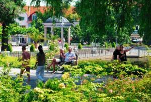 Kuren in Deutschland: Eisenmoorbad Bad Schmiedeberg Sachsen-Anhalt
