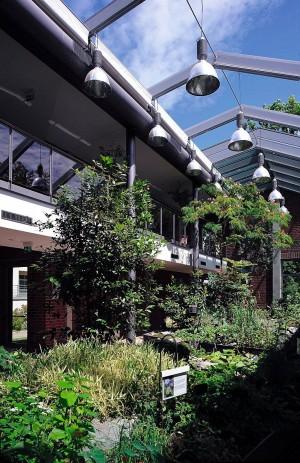 Kuren in Deutschland: Innenbereich der Klinik Eisenmoorbad Bad Schmiedeberg Sachsen-Anhalt