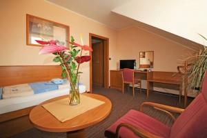 Kuren Tschechien: Beispiel Einzelzimmer Komfort im Kurhaus Palace 1 Franzensbad Frantiskovy Lazne Tschechien
