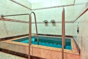 Kuren in Tschechien: Tauchbecken des Hotel Agricola Wellness und Sport Resort in Marienbad Mariánské Lázně